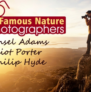 A List of the World's Most Famous Nature Photographers